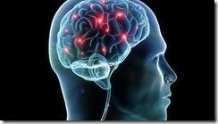 High sugar diet and brain function