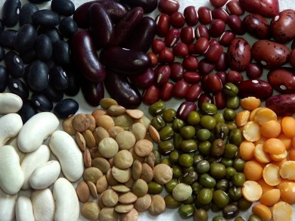 dried_Pulses_and_legumes
