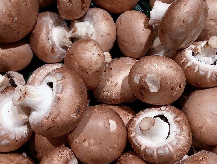 Can mushrooms improve your vitamin D status?
