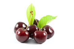 Montmorency Cherry
