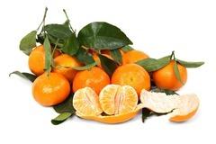 citrus-2395_12806