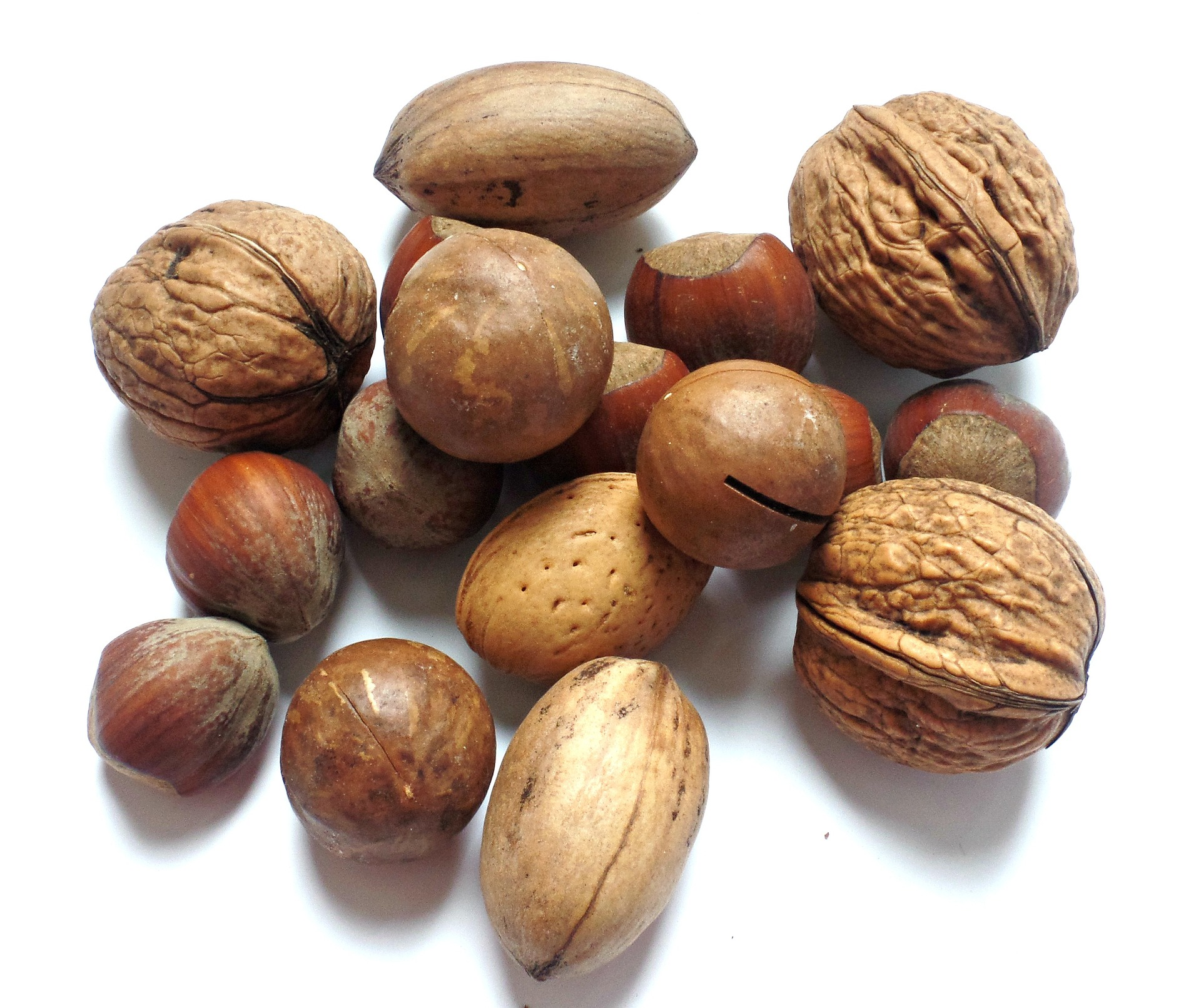 How Healthy are Nuts?